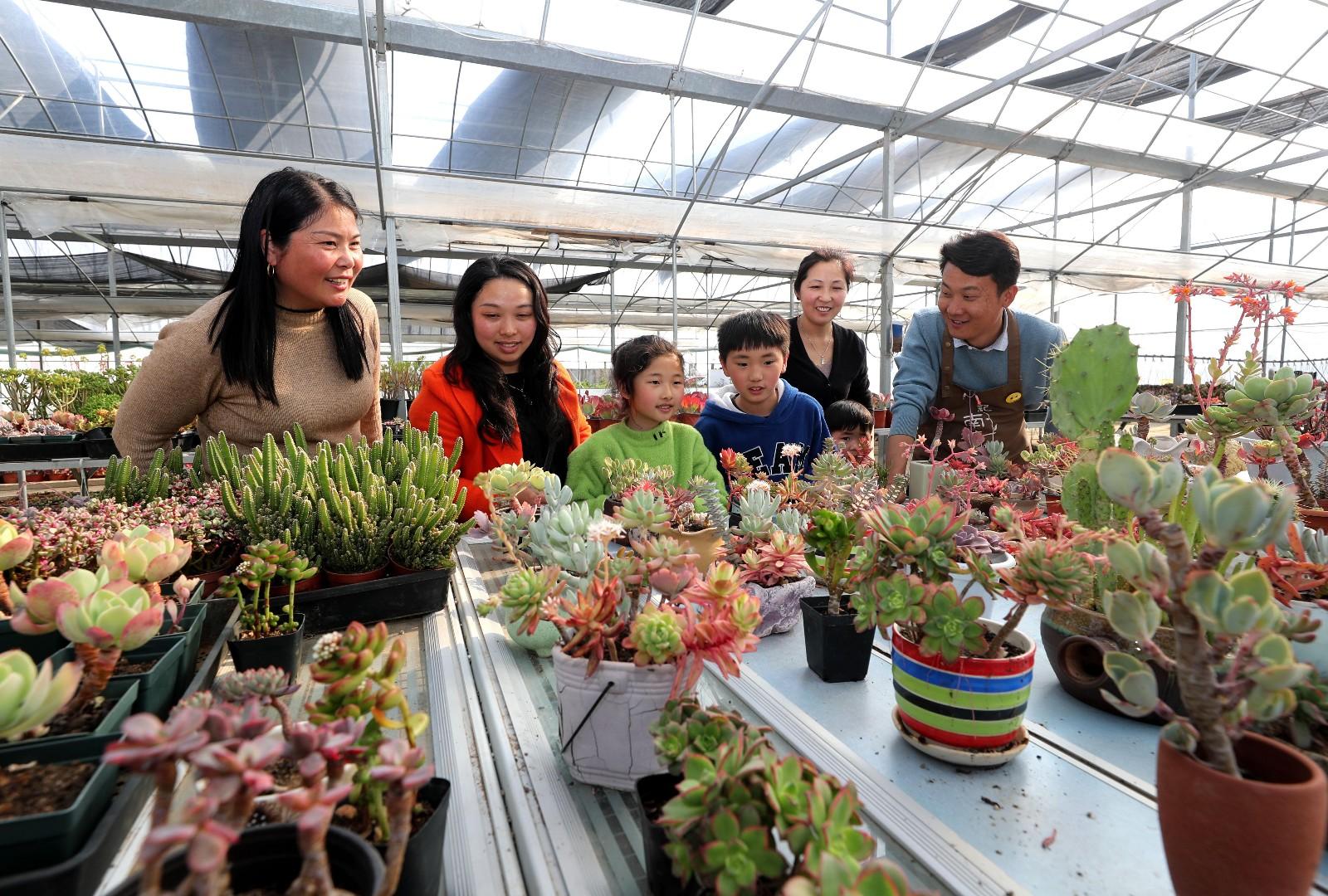 3月14日,游客在全椒县石沛镇南塘花坊选购绿植。
