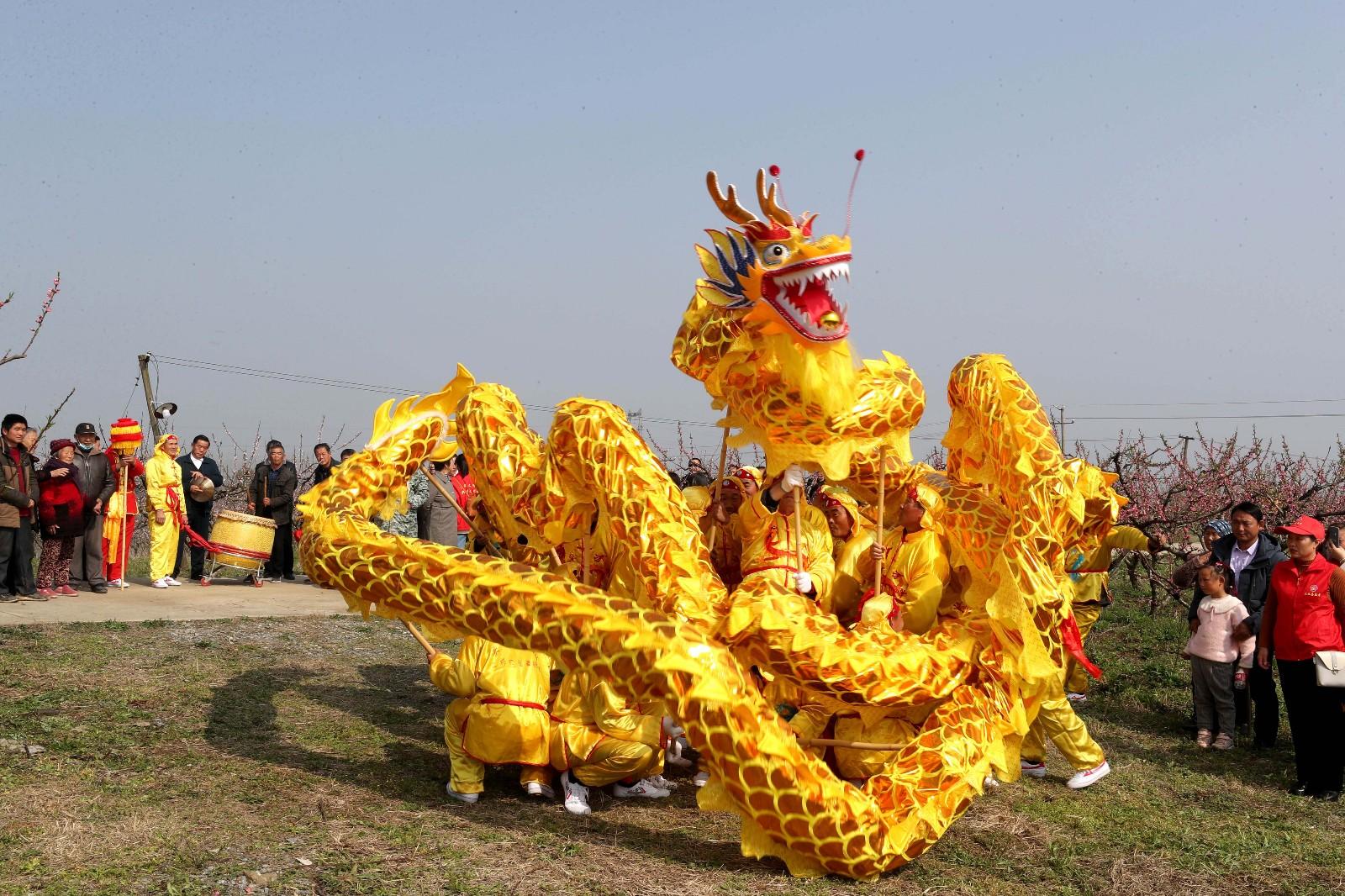 3月14日,游客在全椒县二郎口镇程家市桃园观看舞龙表演。 (1)